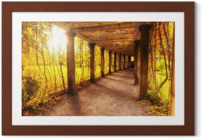 Poster en cadre Beau parc d'automne