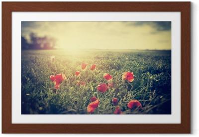 Gerahmtes Poster Vintage Fotografie einer Mohnwiese. Landschaft im ländlichen Raum