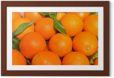 Poster i Ram Tasty Valencia apelsiner nytaget