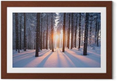 Plakat w ramie Zachód słońca w zimowym lesie