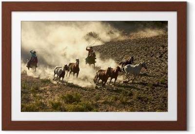 Poster en cadre Cowgirl et cowboy galop des chevaux sauvages au lasso et