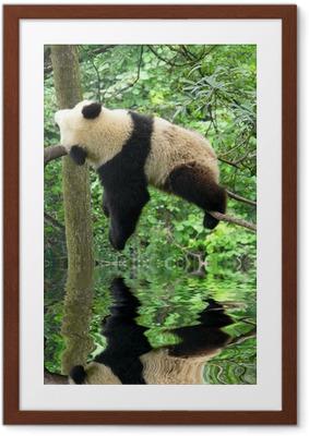 Poster i Ram Panda
