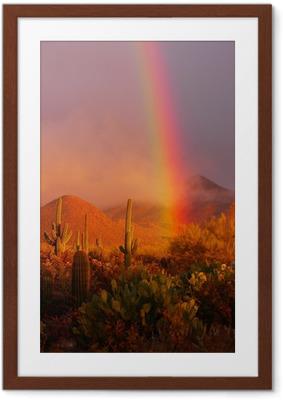 Poster en cadre Arc en ciel coucher de soleil dans le parc national de Saguaro, Arizona, USA