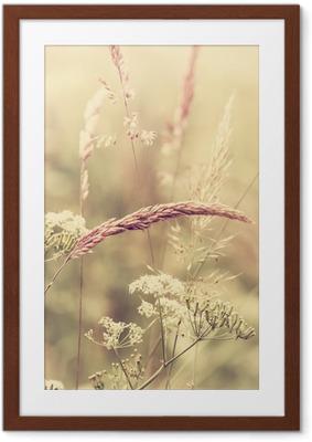 Poster en cadre Summer meadow