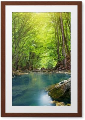 Ingelijste Poster Rivier in de bergen bos.