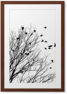 Plakat w ramie Ptaki latające