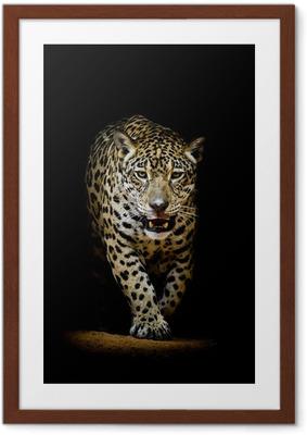 Póster com Moldura Leopard portrait