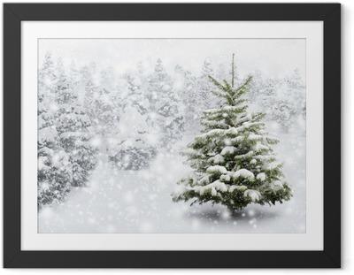 Ingelijste Poster Kerstboom in een mooie sneeuwval
