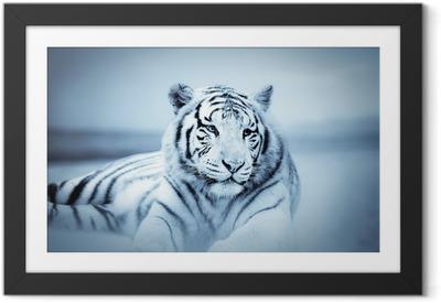 Poster i Ram Tiger