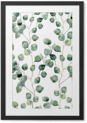 Poster en cadre Aquarelle vert seamless floral avec des feuilles rondes d'eucalyptus. Main motif peint avec des branches et des feuilles d'argent eucalyptus dollar isolé sur fond blanc. Pour la conception ou de fond
