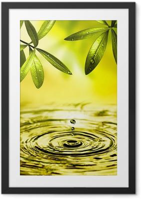 Blätter hängen über Wasser Framed Poster