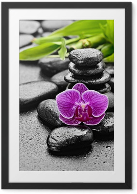 Gerahmtes Poster Orchidee
