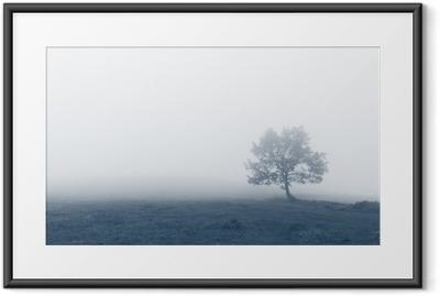 Yksinäinen puu sumuilla Kehystetty juliste
