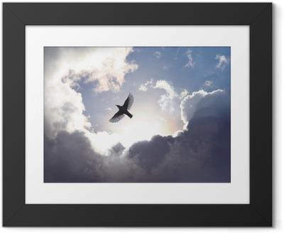 Image encadrée Oiseau ange dans le ciel
