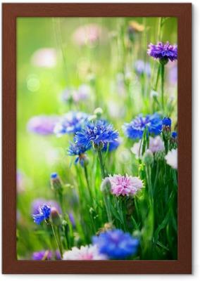 Afbeeldingen Blauwe Bloemen