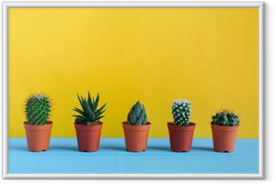 Image encadrée Cactus sur le bureau avec wal jaune