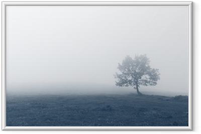 Ensomt træ med tåge Indrammet billede