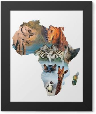 africa collage Framed Poster