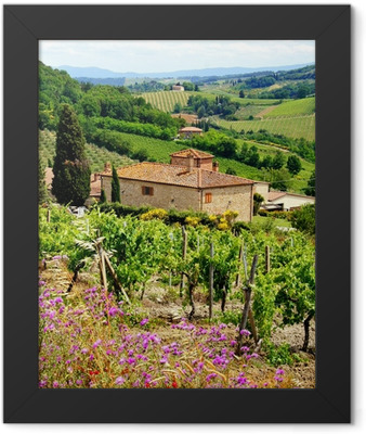 View through vineyards with stone house, Tuscany, Italy Framed Poster