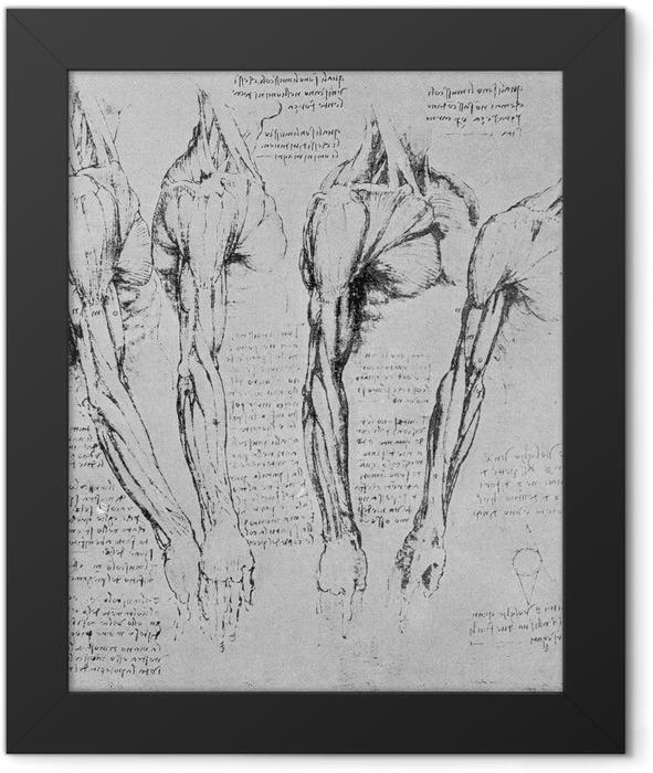 Plakat w ramie Leonardo da Vinci - Studium rąk - Reprodukcje