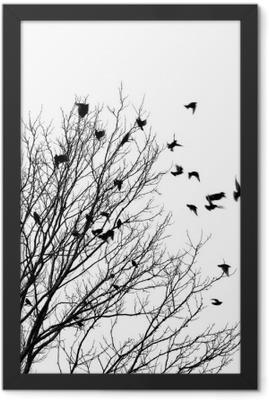 flying birds Framed Poster