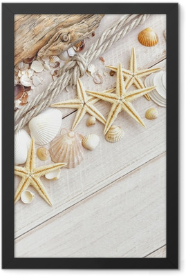 Sea shells background Framed Poster