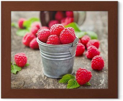 Fresh raspberry Framed Picture