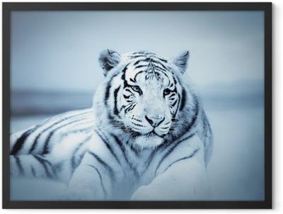 Tigre Framed Poster