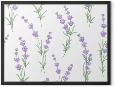 Seamless pattern of lavender flowers on a white background. Watercolor pattern with Lavender for fabric swatch. Seamless pattern for fabric. Vector illustration. Framed Poster