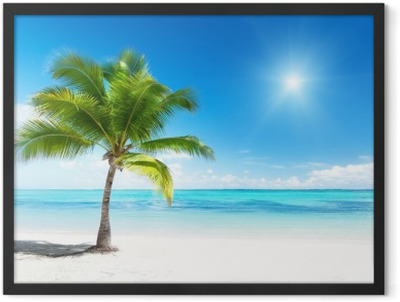 palm and sea Framed Poster