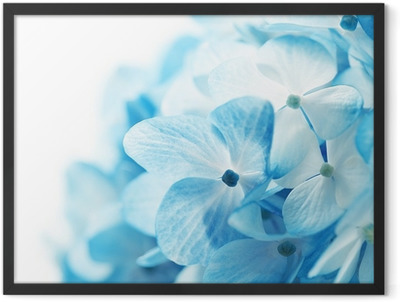 flowers background Framed Poster