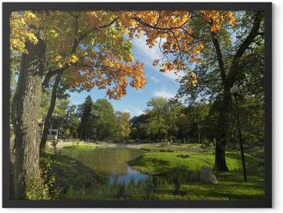 Park Framed Poster