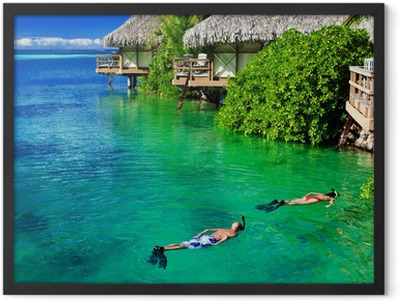 Young couple snorkeling in clean water over reef Framed Poster