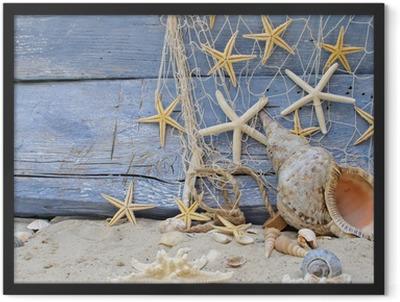 Urlaubserinnerung: Posthornschnecke, Seesterne und Fischernetz Framed Poster