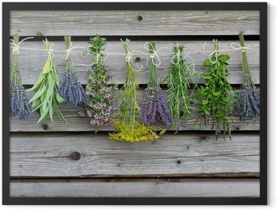 Secret Garden Posters • Pixers® - We live to change