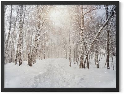 Winter birchwood Framed Poster