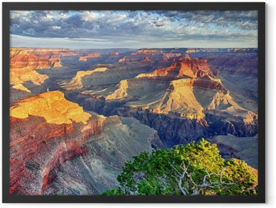 Morning light at the Grand Canyon Framed Poster