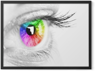 Colorful eye Space for text. Framed Poster