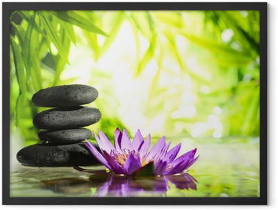 Spa still life with lotus and zen stone on water Framed Poster