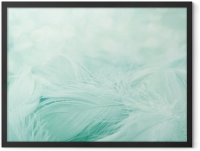 Soft fluffy feathers Framed Poster