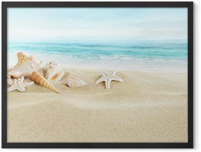 Shells on sandy beach Framed Poster