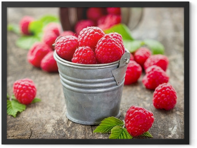 Fresh raspberry Framed Poster