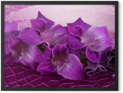 Beautiful gladiolus flower in water on purple background Framed Poster
