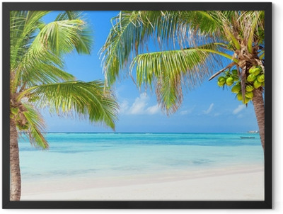 Tropical beach with coconut palms and transparent waters Framed Poster