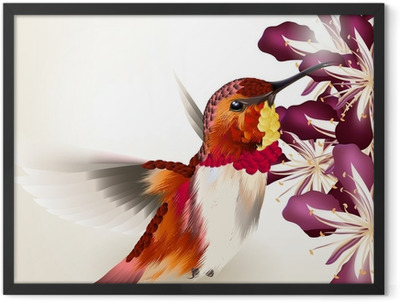 Beautiful vector realistic humming bird with flowers Framed Poster