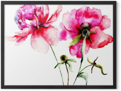 Red Peony flowers Framed Poster