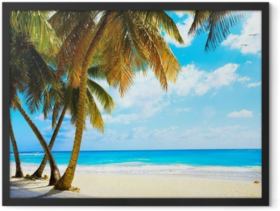Art beautiful untouched tropical sea beach Framed Poster