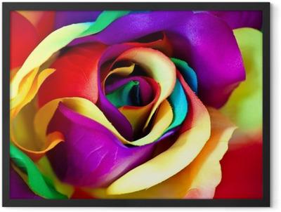 fake rose flower Framed Poster
