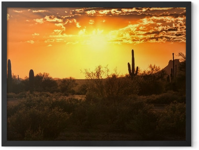 Beautiful sunset view of the Arizona desert with cacti Framed Poster