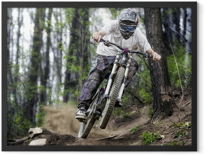 Mountainbiker in the forest Framed Poster